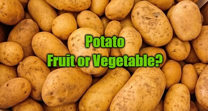 king of fruits is a potato a fruit or vegetable