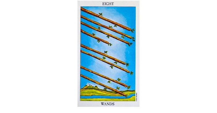 8 of wands tarot card sexuality